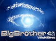 Big Brother 4.1