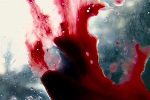 Tontine Massacre: reality show, którego nie chcesz zobaczyć   Foto: tontinemassacre.com