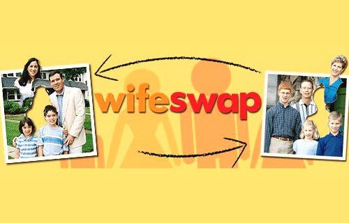 Logo programu Wipe Swap