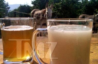 Uczestnicy Fear Factor mieli za zadanie wypić całą szklankę spermy osła | fot. TMZ