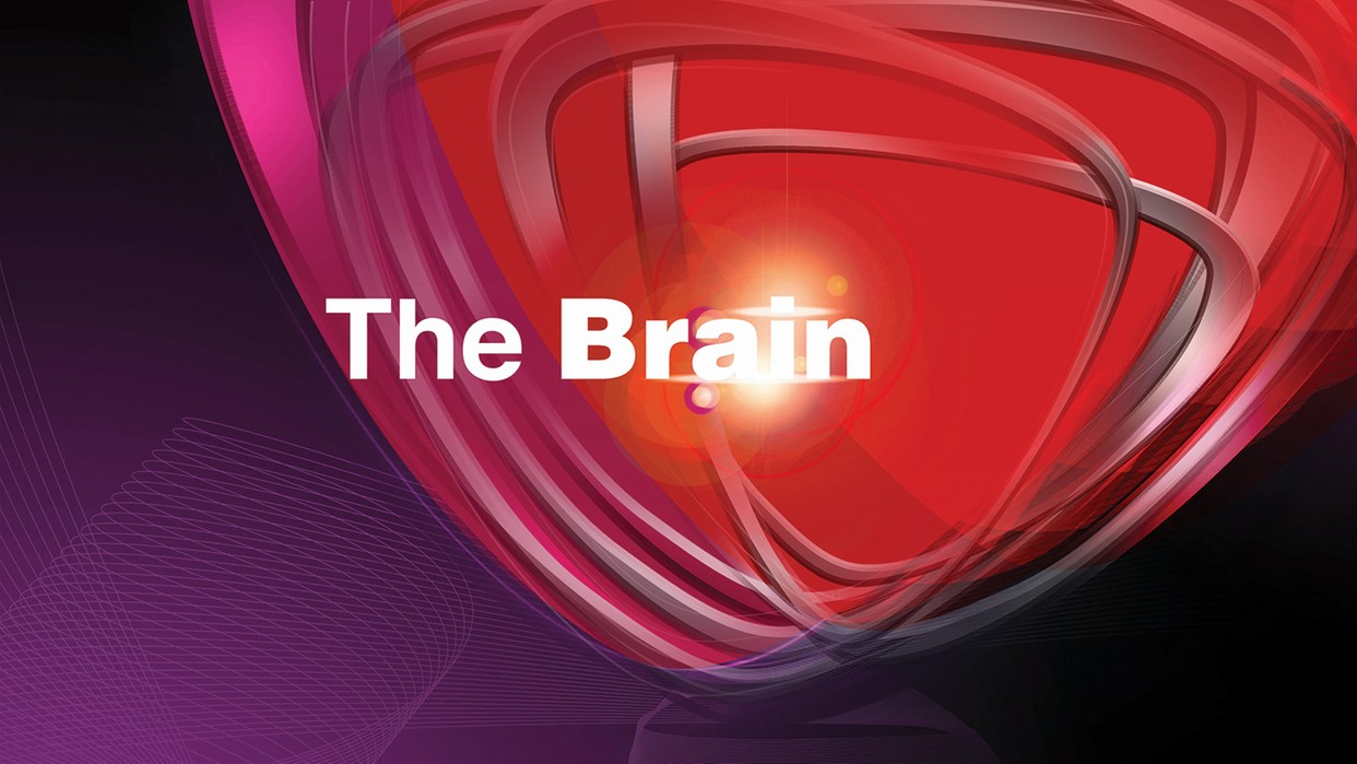 "Logo programu ""The Brain"""